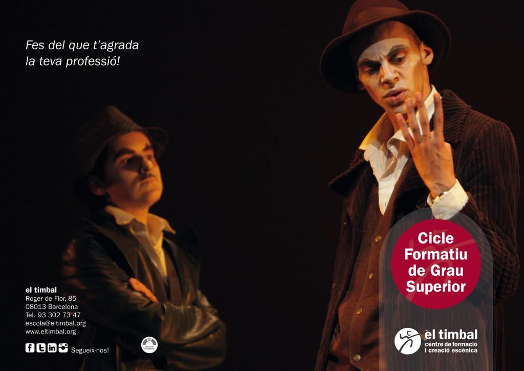 Cicle Formatiu de Grau Superior en Tècniques d'Actuació Teatral, nova titulació oficial